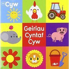 Geiriau Cyntaf Cyw by Helen Davies (Paperback, 2014)