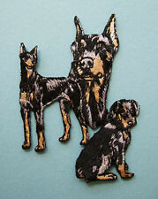IRON-ON EMBROIDERED PATCH - DOBERMAN - MONTAGE - DOG