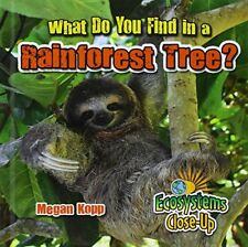 What Do You Find in a Rainforest Tree? (Ecosystems