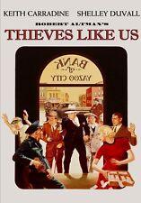 Thieves Like Us (2014, DVD New)