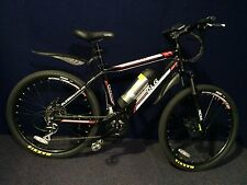 Electric Bicycle - DLG Bikes - Bofeili Crank Drive Motor