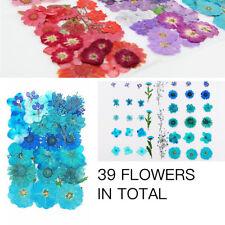 36Pcs Scrapbooking Bookmark Pressed Dried Flowers DIY Preserved Craft Decor UK