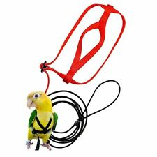 Parrot Bird Harness Leash Adjustable Anti-Bite Training Rope Outdoor Flying New
