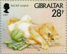 Gibraltar -1997- Red Self Longhair (Felis silvestris catus) - Mnh Stamp