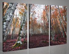 Quadri moderni canvas GUERRA DI COLORI NEL BOSCO stampe su tela colorate 130x90