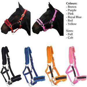 Equestrian Padded Nylon Diamond Headcollar Halter Horse Full Cob Pony Colours