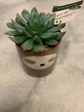 Flora Bunda Faux Succulent In A Ceramic Sloth Planter NWT