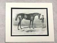 1882 Print Racehorse Winner Derby Racecourse Horse Art Antique Original