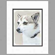Norwegian Lundehund Dog Original Art Print 8x10 Matted to 11x14
