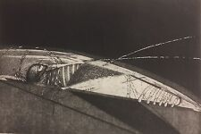 Diana Rattray 1947 Woman in a insecto? 1982, etching 30/35