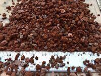 2.5 Gallons/10qt SM-MED Red Lava Rock For Cactus Bonsai Succulent Plant Soil Mix