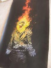Ghost Rider 30x12 inch oil painting. Avengers Endgame Shield Blaze decor art