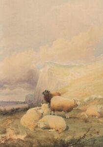 Thomas Sidney Cooper (1803-1902) Sheep Reposing Kent Coastline Watercolour 1864