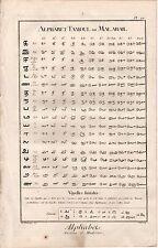 Diderot 1763 Antique Folio Engraving: MALABAR TAMIL ALPHABET LETTER WRITING