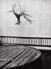 1955/68 Vintage WINE CELLAR VINE STOCK France Photo Art BRASSAI 11x14 Frame Rdy