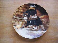 Retired Jim Lamb Beagle Pups Plate Getting Acquainted
