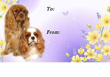 Cavalier King Charles Spaniel Dog Self Adhesive Gift Labels No. 5. by Starprint