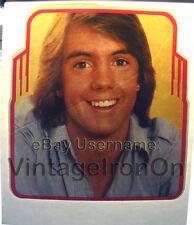 1970's Saun Cassidy SUPER HARDY BOYS NOS vtg t-shirt Iron-On Heat Transfer Print
