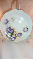 ROSENTHAL Selb  BAVARIA HAND PAINTED  plums  PLATE