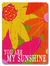 You are my Sunshine Wood Sign - 16x12
