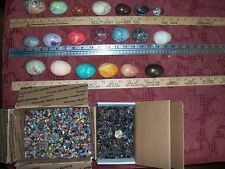1 gemstone egg, 10 fossil shark teeth and 100  gemstones per lot