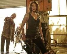 The Walking Dead Lauren Cohan 8x10 Photo 012