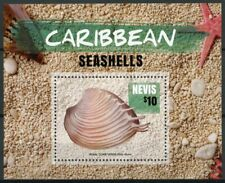 Nevis 2015 MNH Caribbean Seashells 1v S/S Royal Comb Venus Sea Shells Stamps