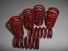 Ducati Federsatz rot für Trockenkupplung