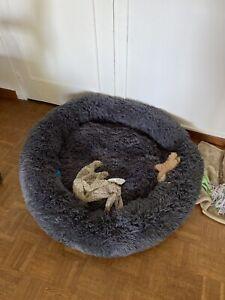 Lit Confortable Peluche Chien