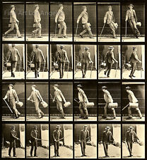 "Eadweard Muybridge Photo, Motion Study, ""Man with Cane, Hat and Bag"" 1880s 11x17"