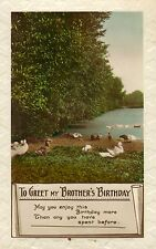 1920s or 30s postcard ! to greet my brothers birthday ! real photo ( ducks )