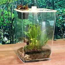 Plant Reptile Vivarium Tank Lizard Snake Spider Insect Breeding Box Feeding  ❤