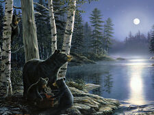 LED Lighted Moon Bears~Canvas Art Picture Wildlife Lodge Decor Light Cabin Print