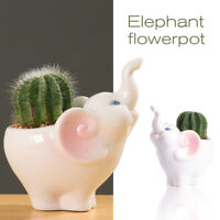 Ceramic Succulent Planters Cute Animal Elephants Flower Pot Vases Indoor/Outdoor