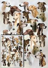 Greyhound Dog Gift Wrapping Paper By Starprint