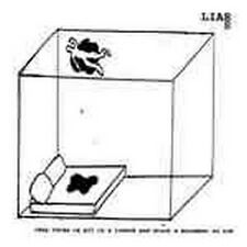 Liars - They Threw Us All In A Trench and & Stuc NEW CD