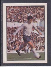 Panini Tottenham Hotspur 1979 Season Football Trading Cards
