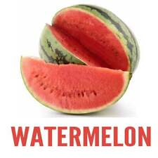 Watermelon Flavor Concentrate - Unsweetened (6 oz)