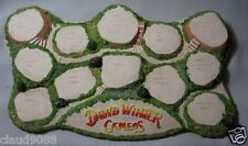 """DAVID WINTER COTTAGES  """"DIORAMA BRIGHT """" 1438  Gift Boxed  DISPLAY"""