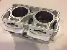 Polaris 800cc AXYS CFI/RMK 2008-'17 We RePlate 85mm SERVICE TO YOUR CYLINDER