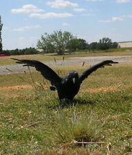 Realistic Lifelike Flying Crow CK161