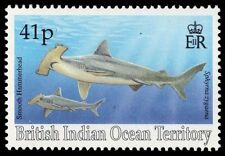 BR INDIAN OCEAN 156 (SG160) - Smooth Hammerhead Shark (pa16250)