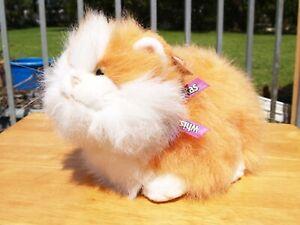"GUND - WHISKAS CHUCK KITTY CAT - 17"" - #41563 - 1999 - VERY NICE - ALL TAGS"