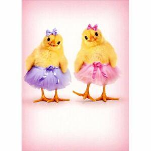 Avanti Two Chicks In Tutus Cute Easter Card