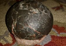 Dinosaur Hadrosaur Egg 6 lbs Authentic Very Nice Smoke Black Color