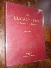 LES EUCALYPTUS EN AUSTRALIE ET EN TASMANIE - H. J. Renier 1953 - Botanique Congo