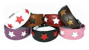 Dog Collar Leather Whippet Greyhound Wolfhound Hound Slighthound STAR COLLAR