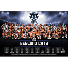 AFL - 2016 Team Posters Geelong Cats POSTER 61x91cm NEW * Footy