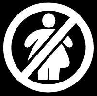 NO FAT CHICKS VINYL DECAL STICKER WINDOW WALL CAR BUMPER JDM EURO DOPE FUNNY