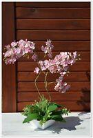 Topfpflanze künstlich, Kunstpflanze Kunstblume Orchidee ROSA 60cm mit Topf